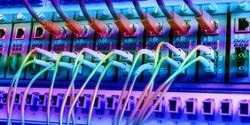 Viele Netzwerkkabel und Ports
