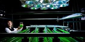 Frau lachend im Chemielabor mit grünen Leitungen